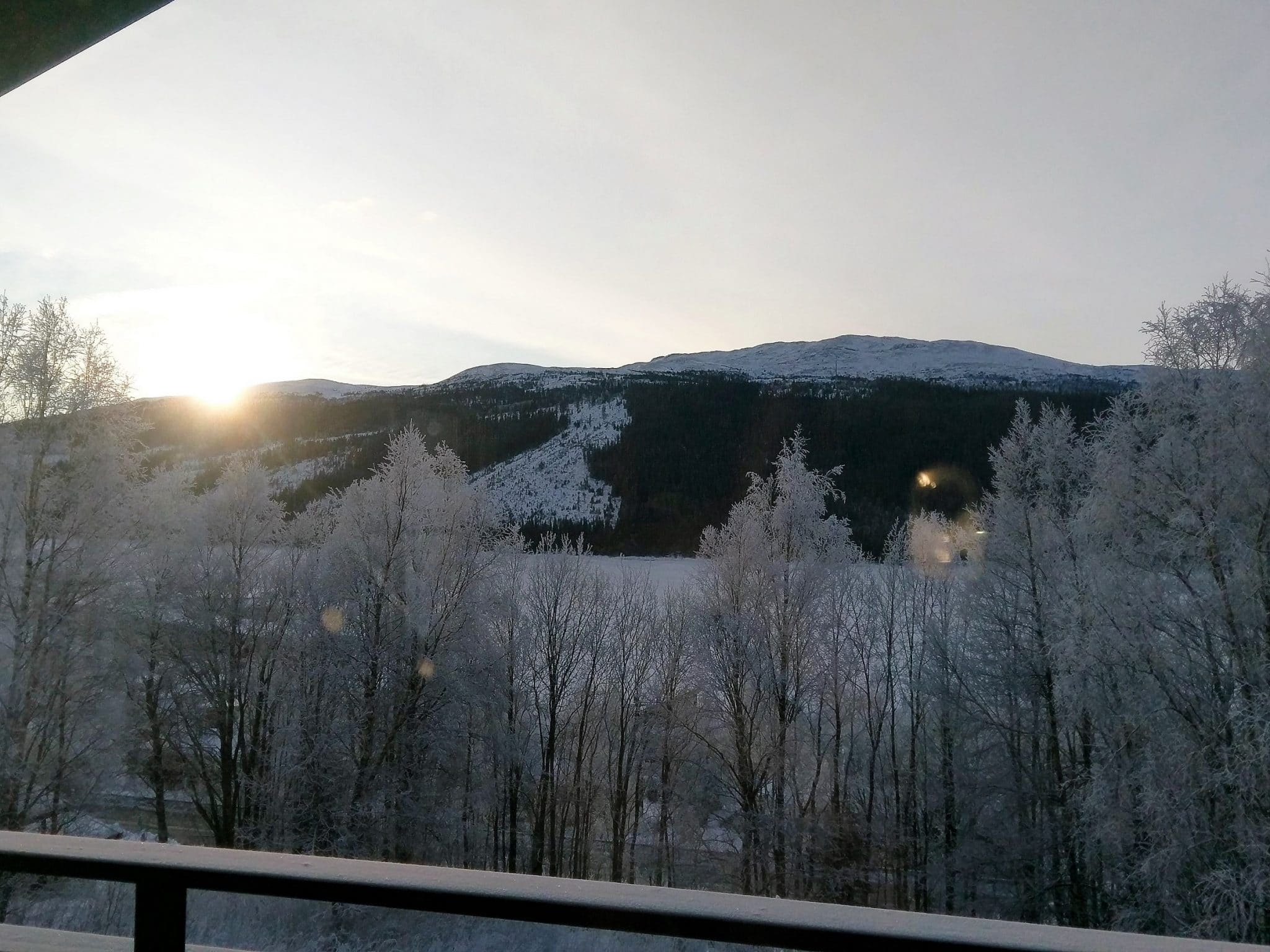 Vy över frostiga träd och fjäll från Slalomsvängen 9 i Åre