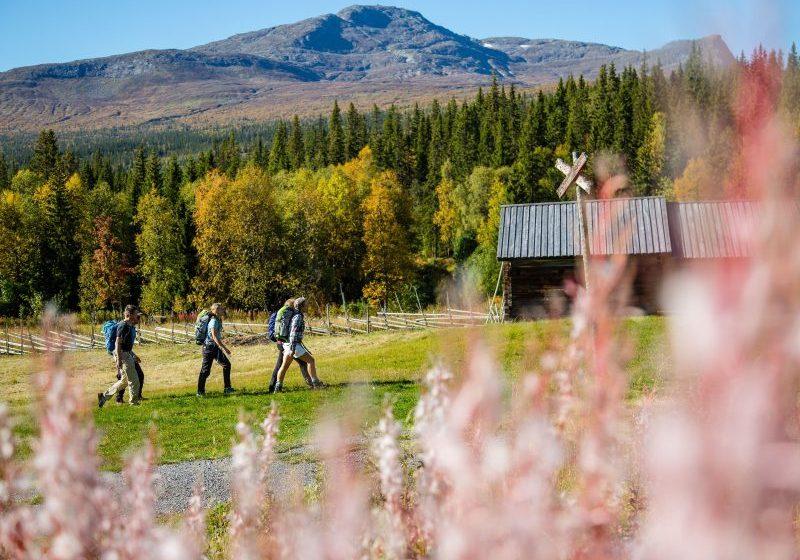 Vuxna vandrar i vackra höstfärger i Åre